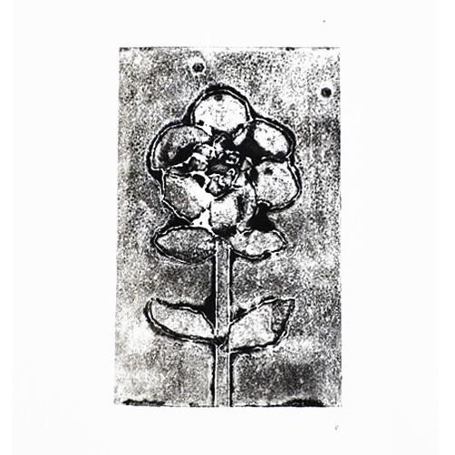 anemone print 01