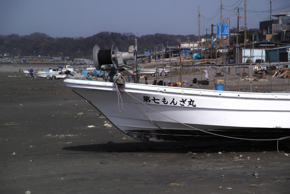 SD1M3-2964.jpg