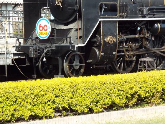 DSCF5054.jpg