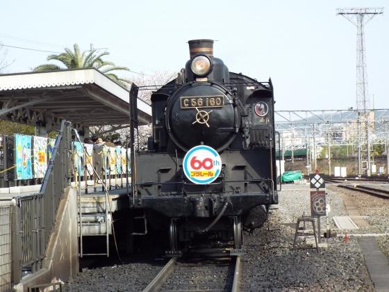 DSCF5083.jpg