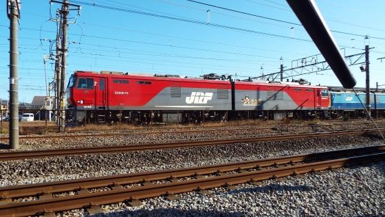 DSCF8434.jpg