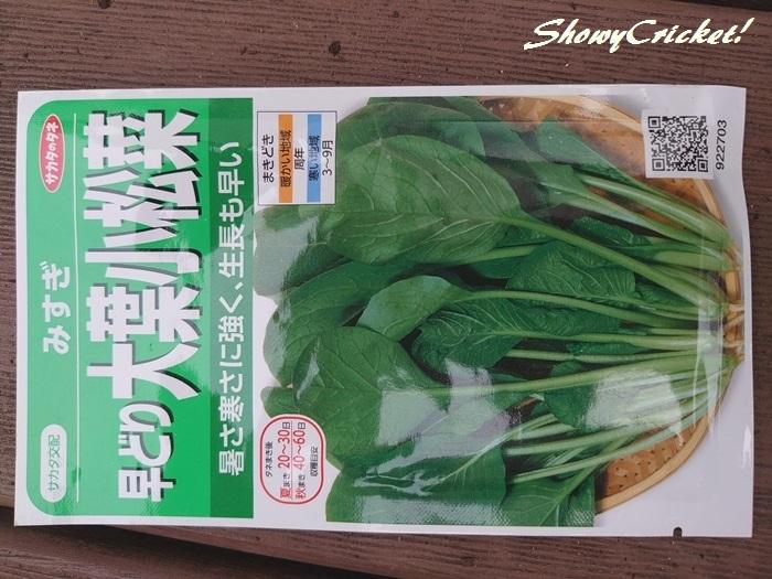 2020-04-26小松菜 (1)