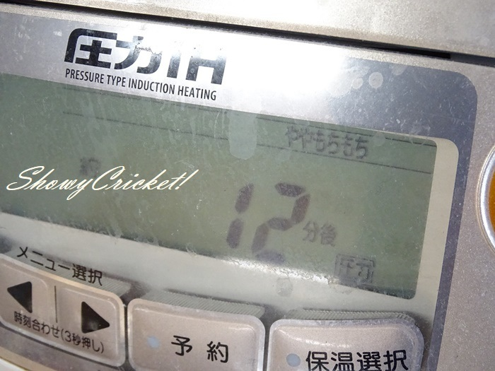 2020-05-23牛丼 (7)