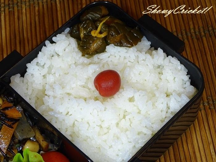 2020-07-11豆腐ハンバーグ弁当 (16)