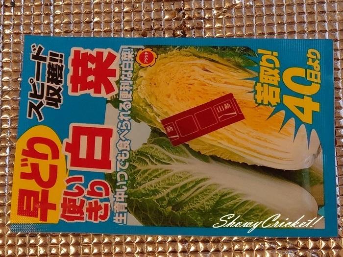 2020-08-19白菜 (1)