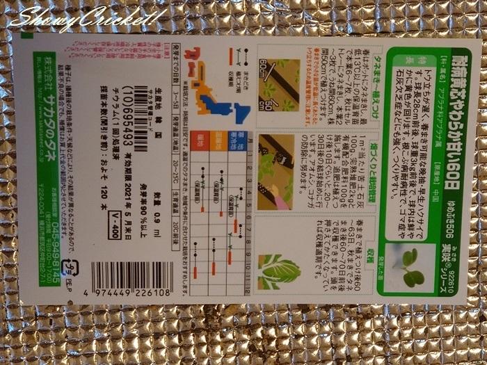 2020-08-19白菜 (6)