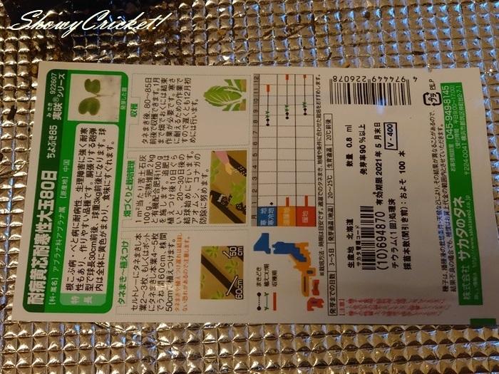 2020-08-19白菜 (9)