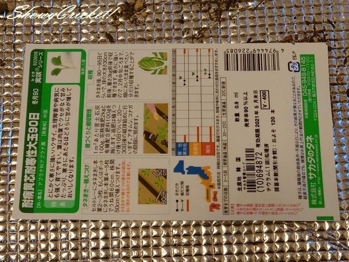 2020-08-19白菜 (12)