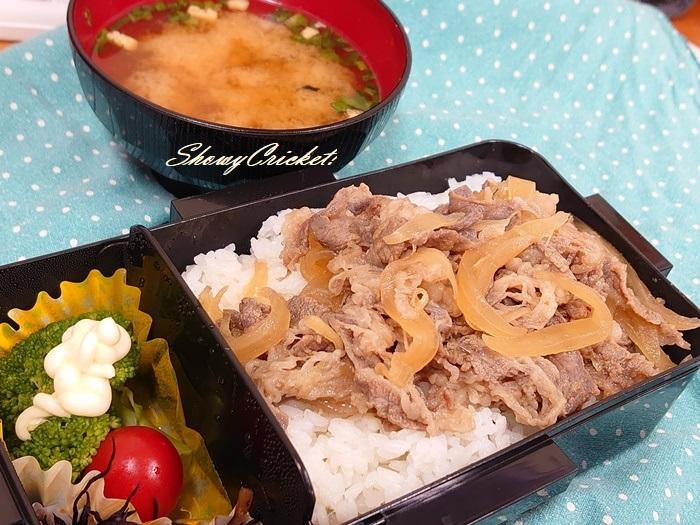 2020-09-04牛丼弁当 (25)