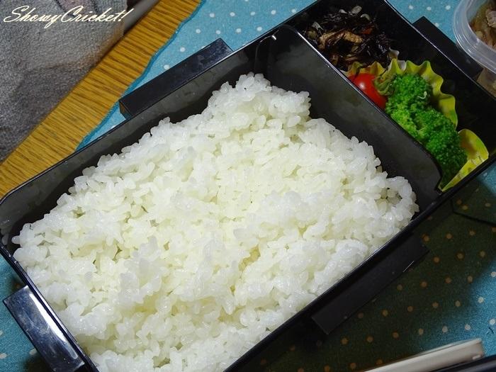 2020-09-04牛丼弁当 (19)