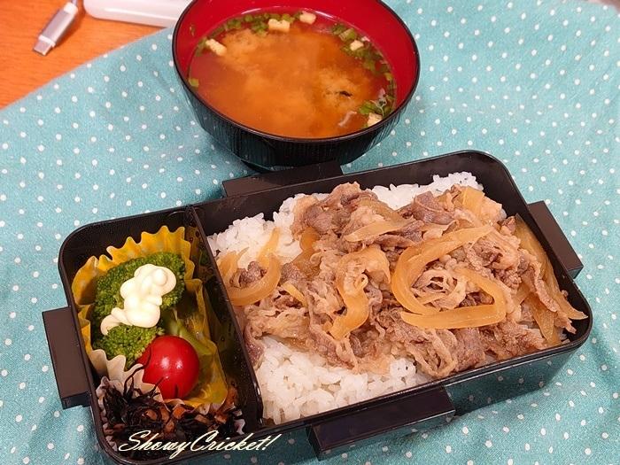 2020-09-04牛丼弁当 (28)