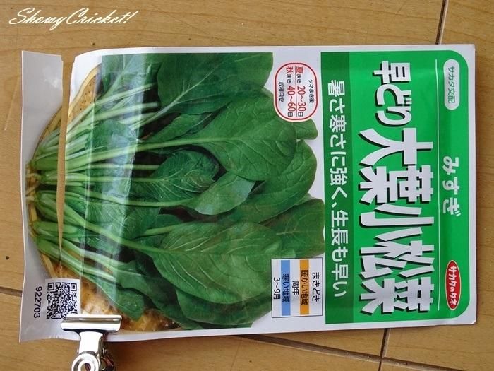2021-04-06小松菜 (1)-001