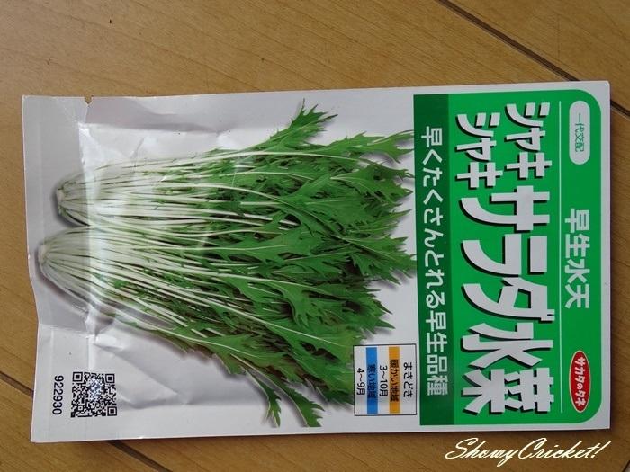 2021-04-06水菜 (1)-001