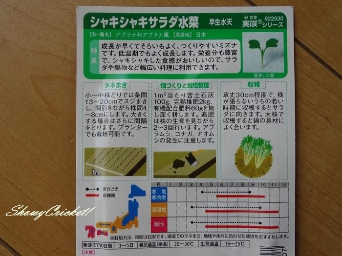 2021-04-06水菜 (2)-002