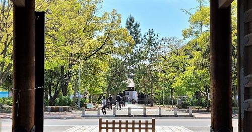 建中寺公園の新緑