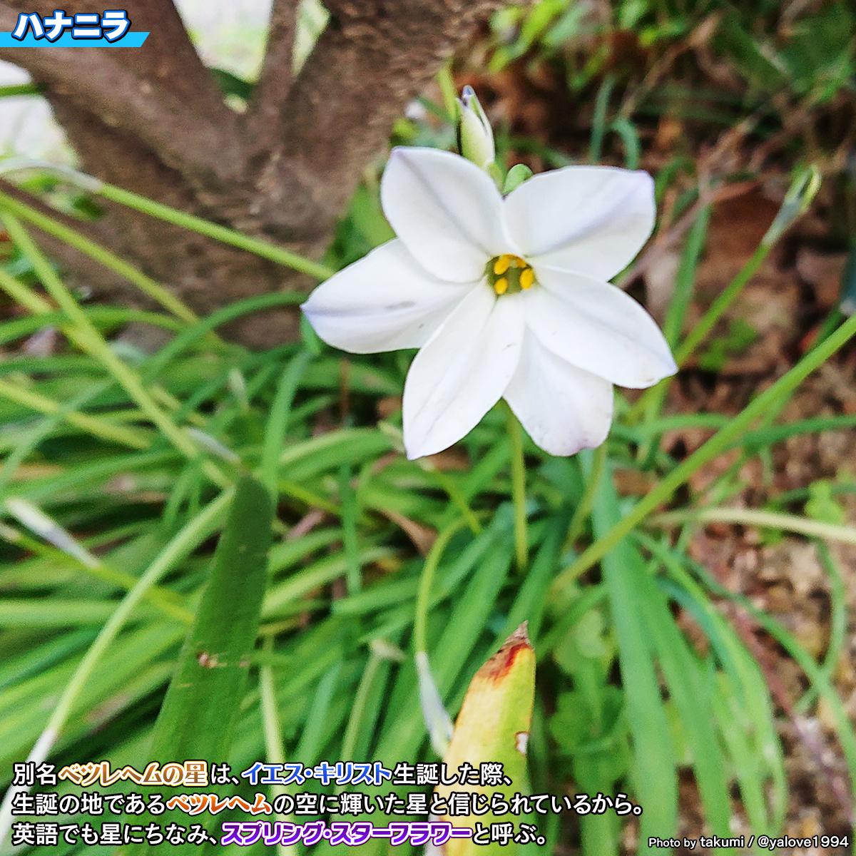 DSC_4193_202103271430327ce.jpg
