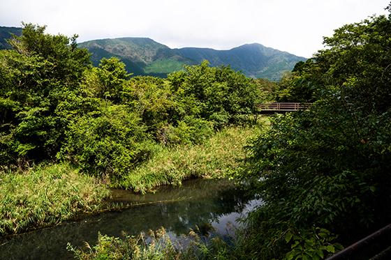 2020-09hakoneatami17.jpg