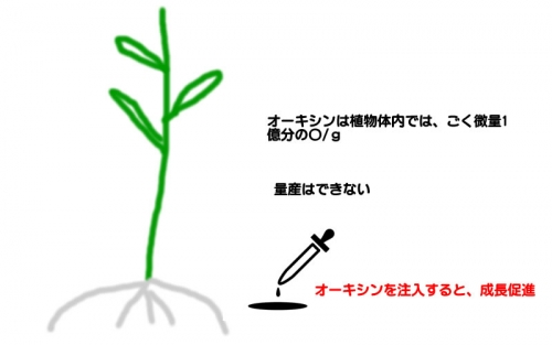 rikagaku2.jpg