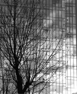 201225_dai4build_02bw.jpg