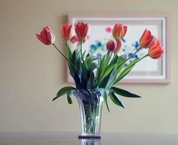 flower-vase-438461_640 (2)