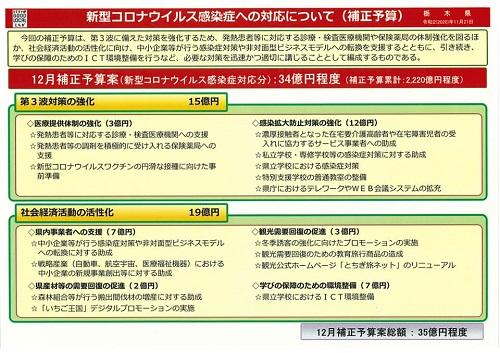 栃木県議会 これからの動き