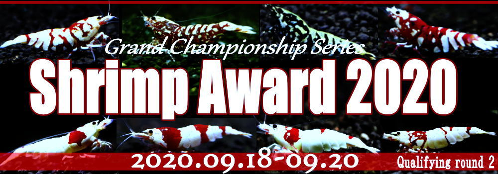 shrimpaward202009000.jpg