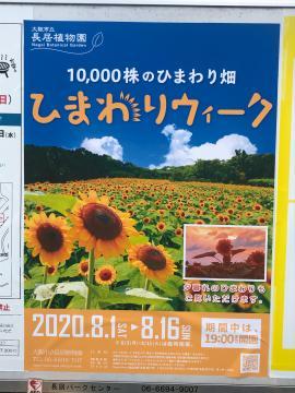 fc2blog_20200801214943efd.jpg