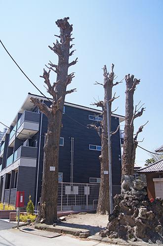 200411八坂香取稲荷合社⑤