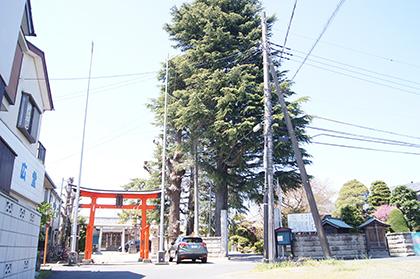 200411八坂香取稲荷合社⑨