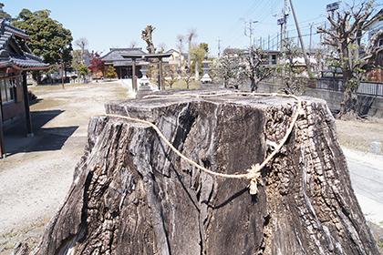 200411牛島女体神社②