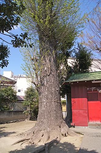 200411大場稲荷神社⑤