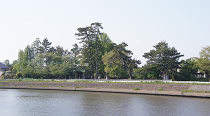 200429蒲生久伊豆神社②