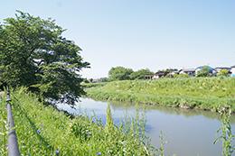 200509宮代胡録神社⑨