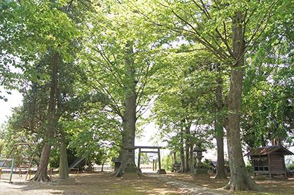 200512向畑香取神社⑧