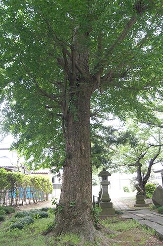 200512増林香取神社①