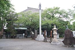 200512浄山寺銀杏④