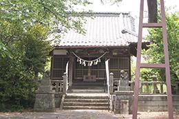 200515三嶋神社黒松⑨