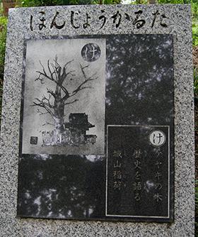 200526城山稲荷神社⑨