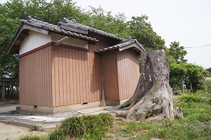 200515堂城稲荷ムク③