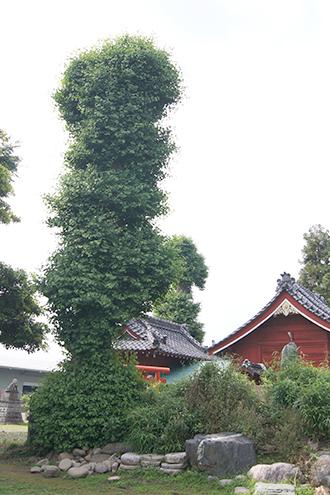 200602梅田女體神社②