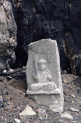 200525萬松寺のシイ③