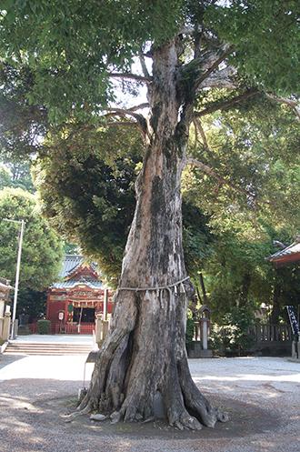 200607千代田金鑚神社⑥