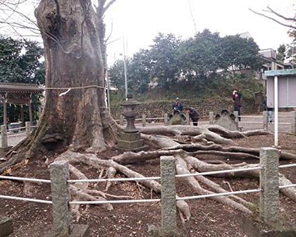 200526城山稲荷神社-原田さん