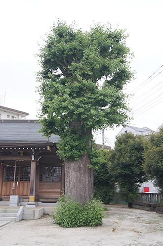 200621上間久里香取神社①