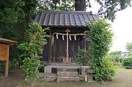 200621田長神社大杉⑤
