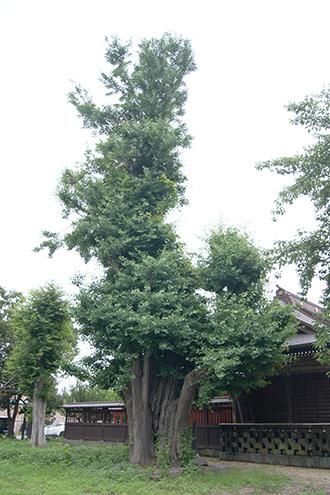200624古城天満宮②