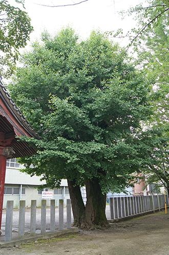 200624總願寺⑧
