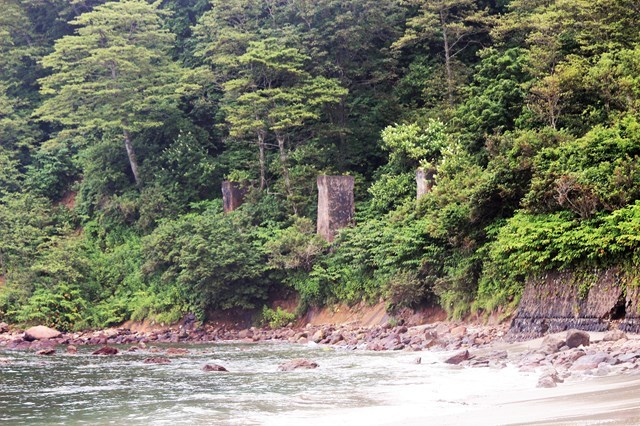 s-⑪雁ノ巣沢付近海沿い橋脚