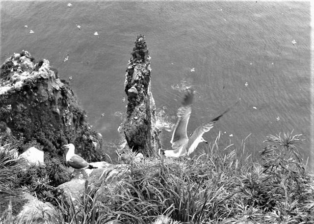 s-⑥赤岩