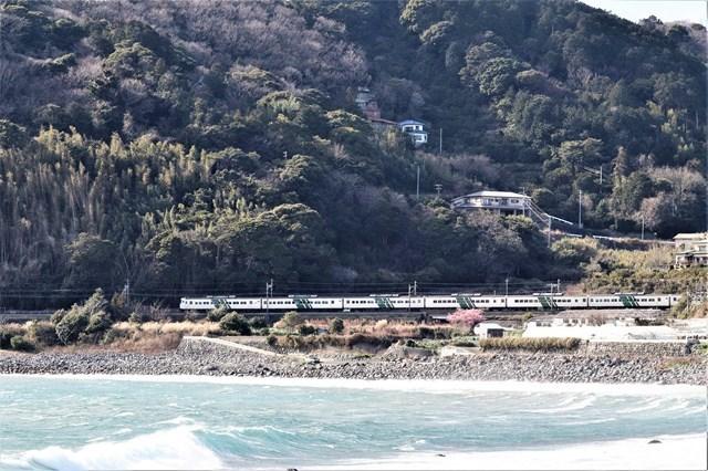 s-⑧稲取~今井浜